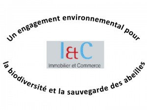 Immobilier & Commerce
