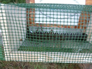 cage_protection_frelon